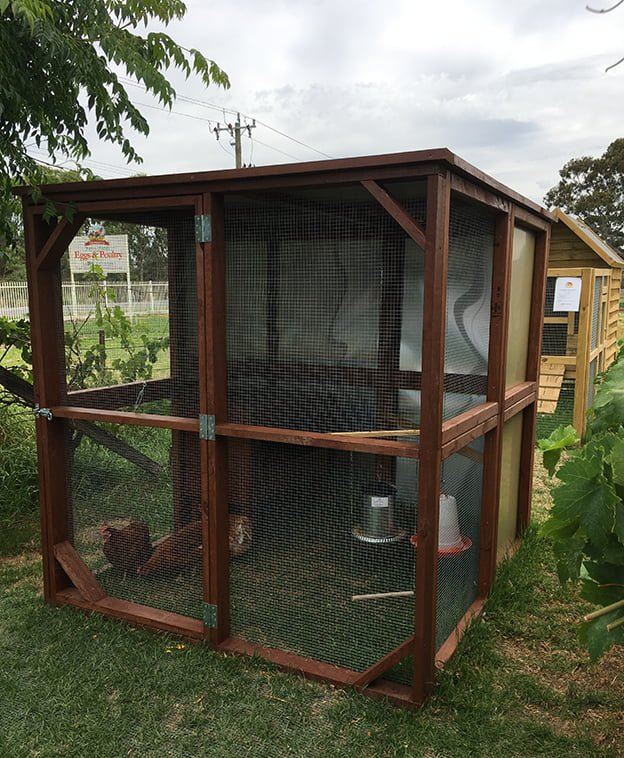 Chook tractor talking hens for Chicken enclosure ideas