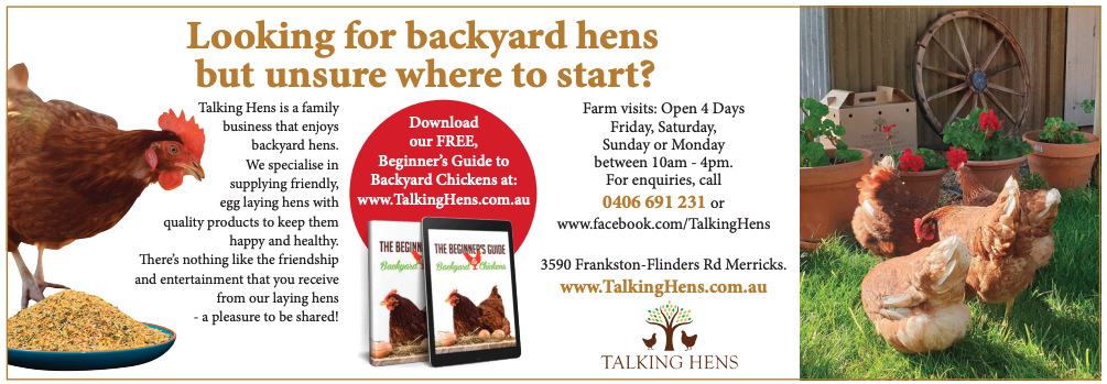 Looking for backyard hens but where to start?